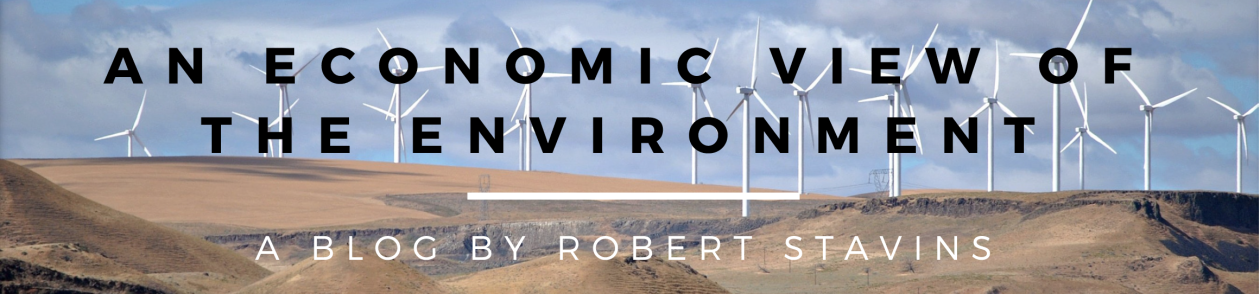 An Economic View of the Environment